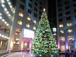 テクノスカレッジクリスマスツリー (2).JPG
