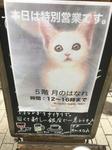 作品展.JPG